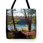 Cary Lake In The Fall Tote Bag
