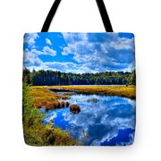 Cary Lake Near Old Forge New York Tote Bag by David Patterson