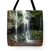 Cascade Falls In The Fall Tote Bag