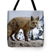 Cascade Red Fox 1 Tote Bag
