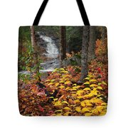 Cascade Creek  Autumn Tote Bag