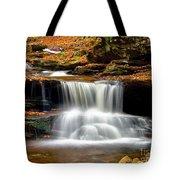 Cascades At Ricketts Glen Tote Bag