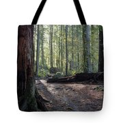 Cascades Forest Path Tote Bag
