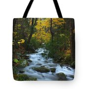 Cascades On The Motor Nature Trail Tote Bag