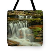 Cascading Everywhere At Ricketts Glen Tote Bag