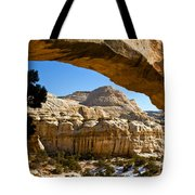 Cassidy Arch Tote Bag