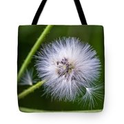 Cast Your Fate To The Wind Tote Bag