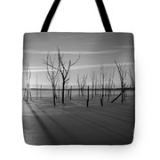 Casting Shadows Bw Tote Bag