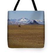 Castle Rock Horses   #8515 Tote Bag