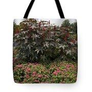 Castor Oil Plant Ricinus Communis Tote Bag