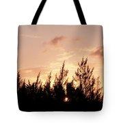 Casurina Sunset Tote Bag