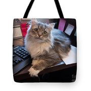 Cat And Keyboard Tote Bag