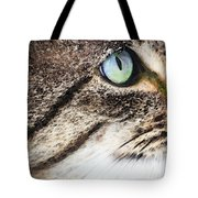 Cat Art - Looking For You Tote Bag by Sharon Cummings