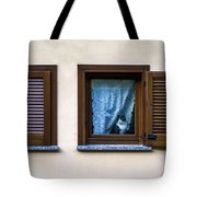 Cat At The Window Tote Bag
