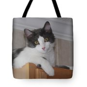 Cat Boy Tote Bag