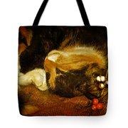 Cat Catnapping Tote Bag