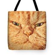 Cat Face Close Up Portrait. Painted Effect Tote Bag