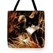 Cat In The Golden Grass Tote Bag