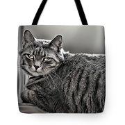 Cat In Window Tote Bag