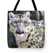 Cat Lick Tote Bag