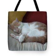Barn Cat Nap Time Tote Bag