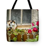 Cat On A Sill Tote Bag