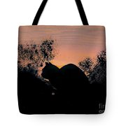 Cat - Orange - Silhouette Tote Bag
