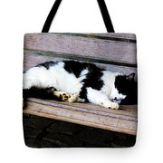 Cat Sleeping On Bench Tote Bag