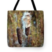 Cat Tail Seeds Tote Bag
