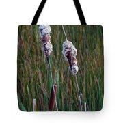 Cat Tails Tote Bag