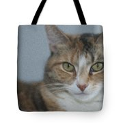 Cat With Swirls Tote Bag