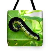 Catalapa Sphinx Caterpillar Tote Bag