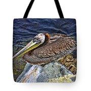 Catalina Pelican Tote Bag