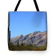 Catalinas Tote Bag