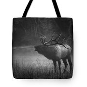 Cataloochee Bull Elk Tote Bag