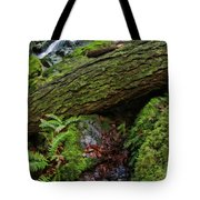 Cataracts Canyon Log And Streem Tote Bag