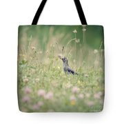 Catbird In The Wildflowers Tote Bag