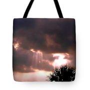 Catch A Sunbeam Tote Bag