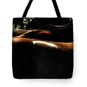 Catching Some Shade 17197 Tote Bag