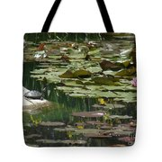 Catching Some Sun 1 Tote Bag