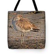 Catching Some Zzzzzs Tote Bag