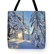 Catching The Light Tote Bag by Tara Turner