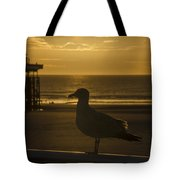 Catching The Rays Tote Bag