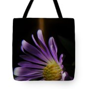 Catching The Sun's Rays Tote Bag