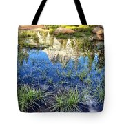 Cathedral Reflection Tote Bag