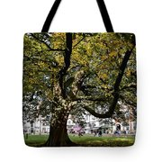Cathedral Square - Exeter Tote Bag