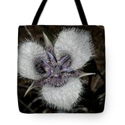 Cats Ears Tote Bag