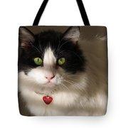 Cat's Eye Tote Bag