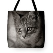 Cat's Eyes #05 Tote Bag