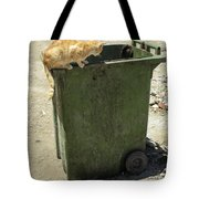 Cats On And In Garbage Container Tote Bag